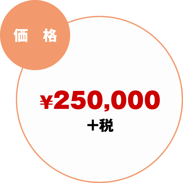 価格:¥250,000+税