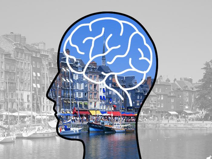 目に留まる写真、視覚よりも脳の感じ方が大事ってホント?