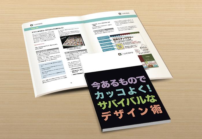 Lucidasbook_img06