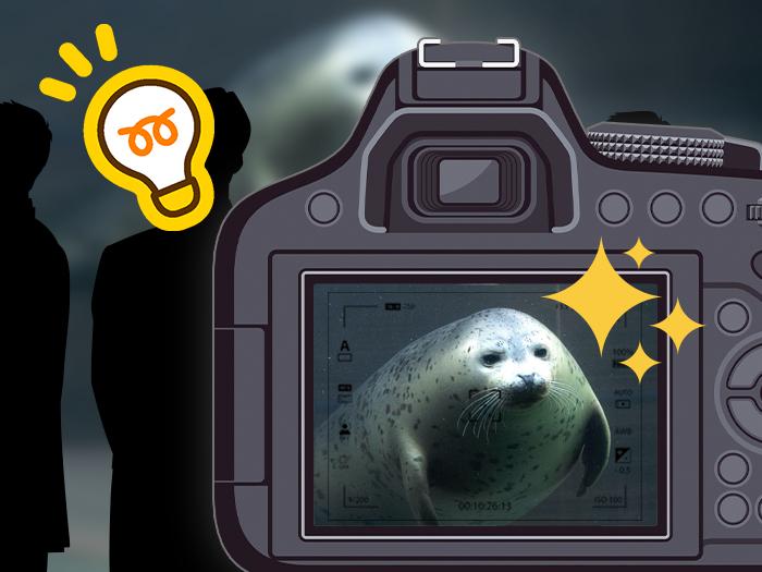 旭山動物園で動物写真をキメるには